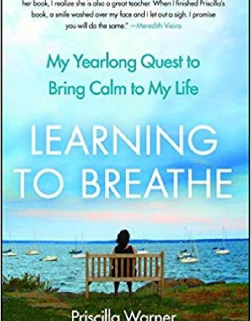 Integral Yoga Distribution Learning to Breathe