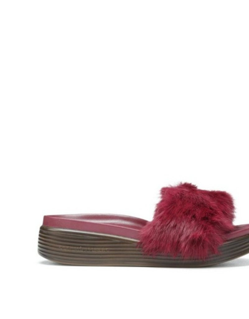 DONALD J. PLINER The Furfi Slide