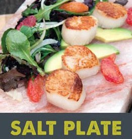 Charcoal Companion Himalayan Salt Plate Recipe Book