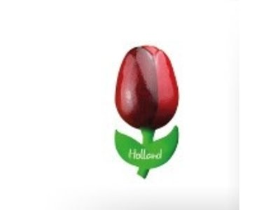 Tulip on Magnet Red/Aubergine