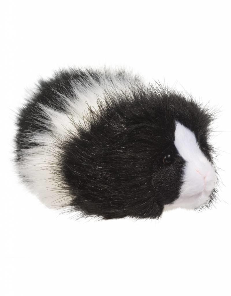 Douglas Angora Blk/Wht Guinea Pig