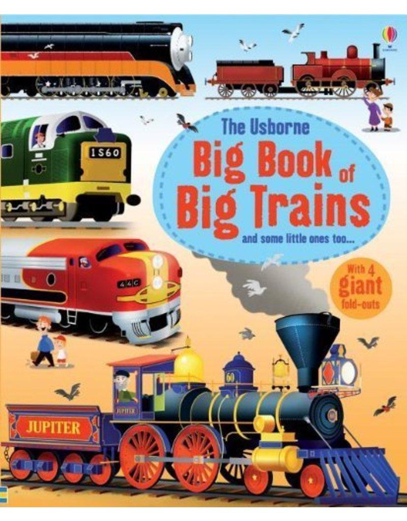 Educational Dev Big Book of Big Trains