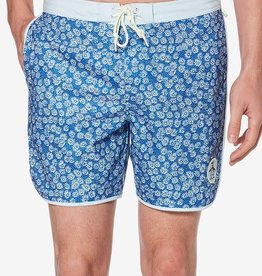Penguin Penquin Daisy Blue Swim