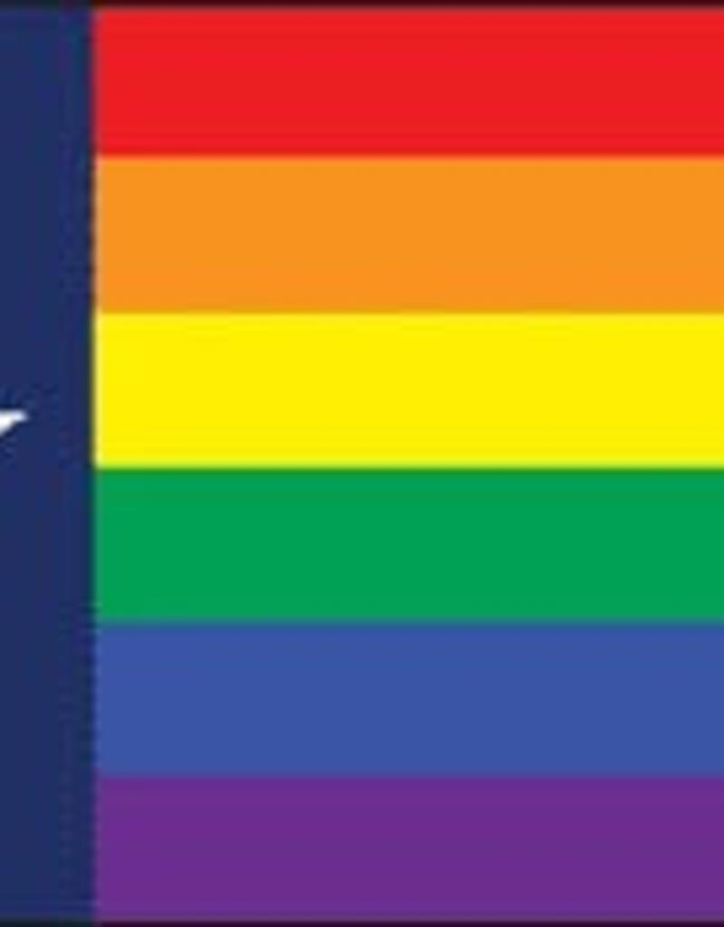 Rainbow Depot 3x5 Rainbow Pride Texas Flag