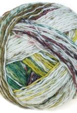 Schoppel Wolle Schoppel Wolle Wunderkleckse - 2322