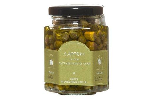 Câpres à l'huile d'olive 100g