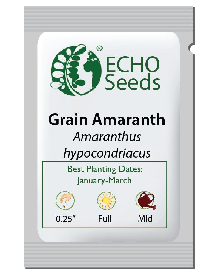Grain Amaranth Seed Packet