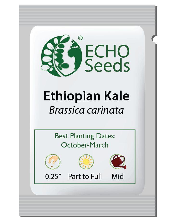 Ethiopian Kale Seed Packet