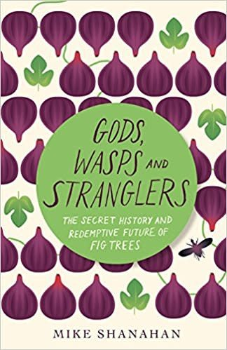 Gods, Wasps and Stranglers