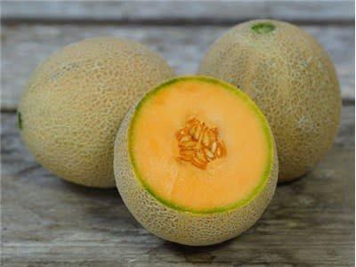 Baker Creek Seeds Melon, Planter's Jumbo