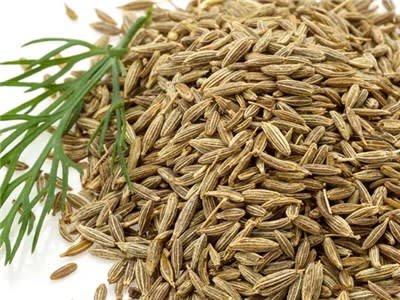 Baker Creek Seeds Herb, Cumin