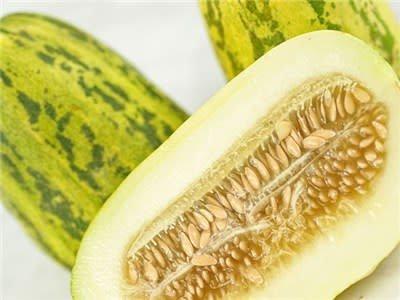 Baker Creek Seeds Melon, Apple