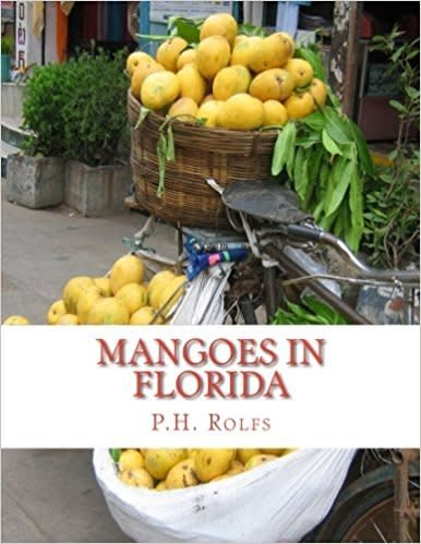 Mangoes In Florida