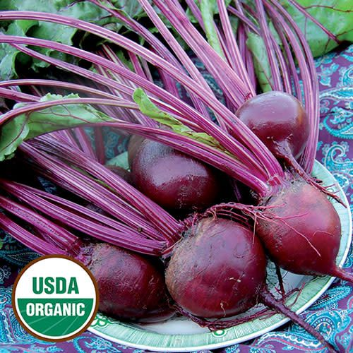 Seed Saver's Exchange Beet, Detroit Dark Red