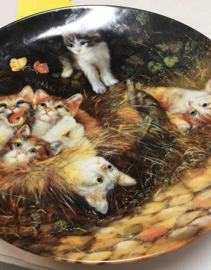 Decor plate kittens playing