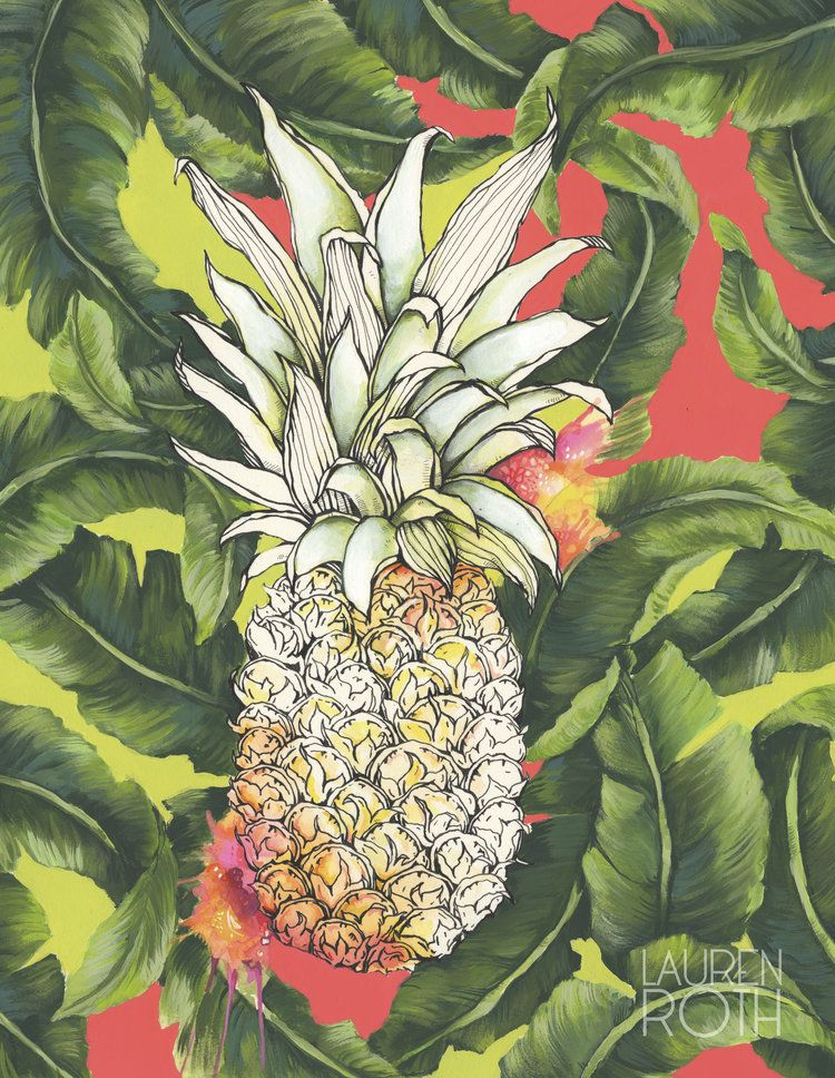 Lauren Roth GICLEE ON CANVAS-PINEAPPLE LEAVES -11X14