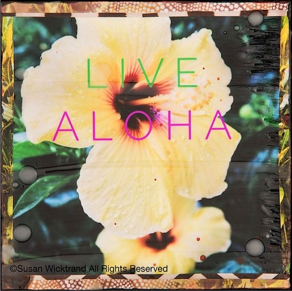 Susan Wickstrand 8X8 HAND-GLASSED ART: LIVE ALOHA HIBISCUS