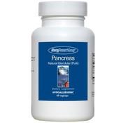 Allergy Research Pancreas Natural Glandular Pork