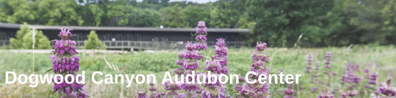 Dogwood Canyon Audubon Center
