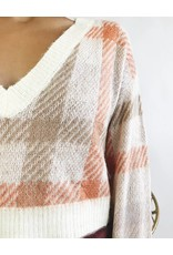 Cropped V-Neck Sweater