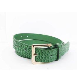 Faux Leather Croc Print Belt - Green