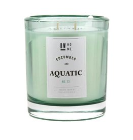 DW Home Candles Cucumber & Aquatic Large Double Wick