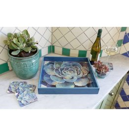 RockFlowerPaper Blue Succulent Square Tray