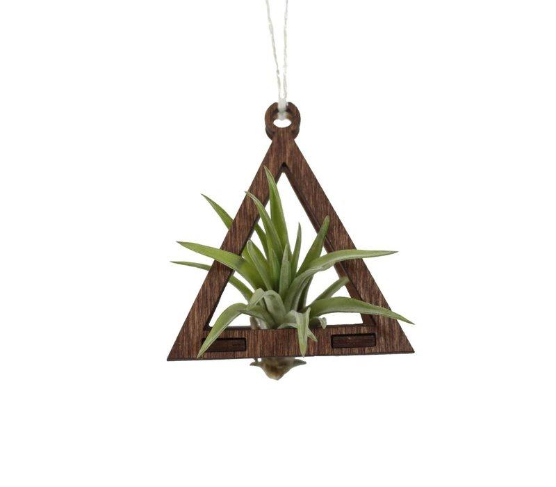 Mini Air Plant Hanger - Triangle