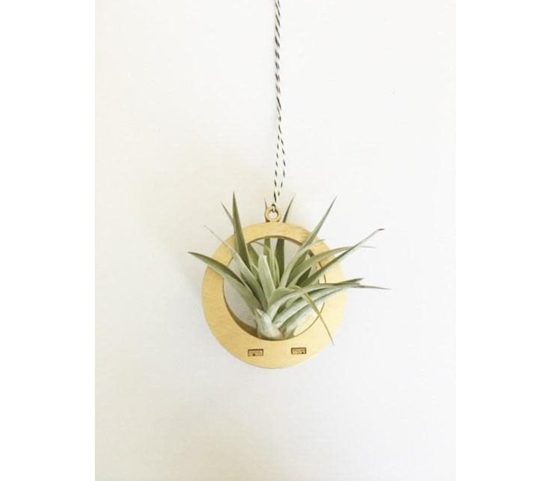 Mini Air Plant Hanger - Circle