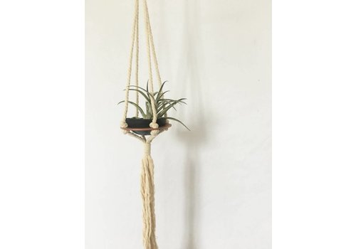 Savvie Studio Macrame Plant Hanger - Single