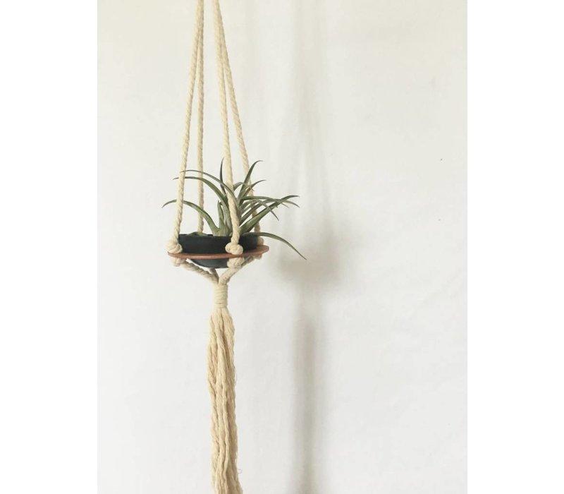 Macrame Plant Hanger - Single
