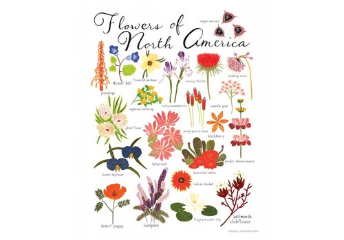 Small Adventure Flowers of North America Art Print