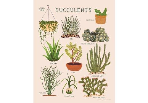 Small Adventure Succulents Art Print