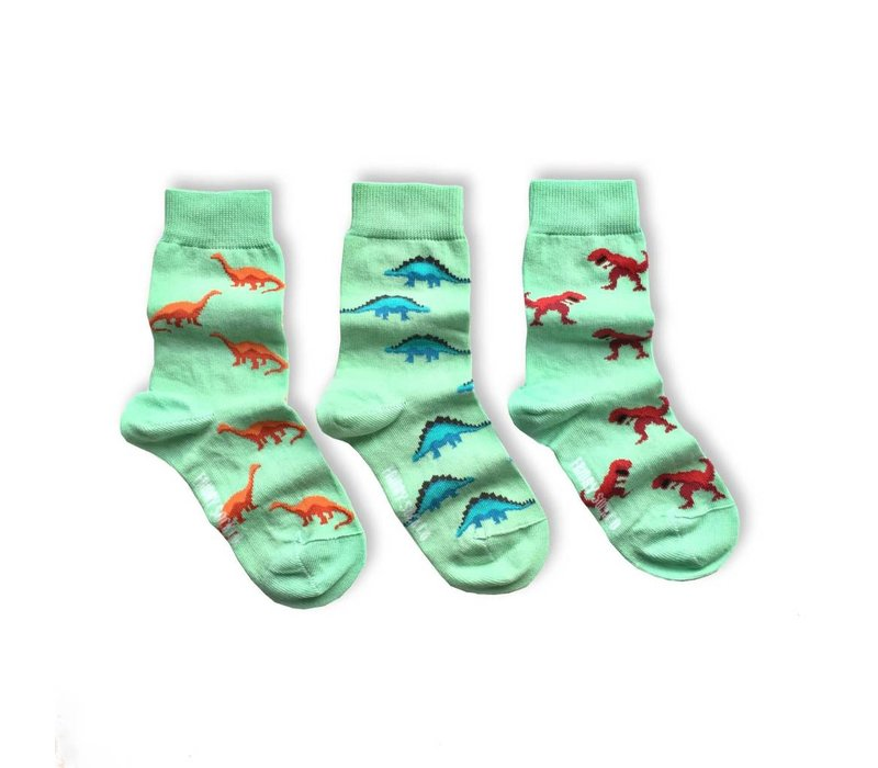 Dinosaur Mismatch Kids Socks