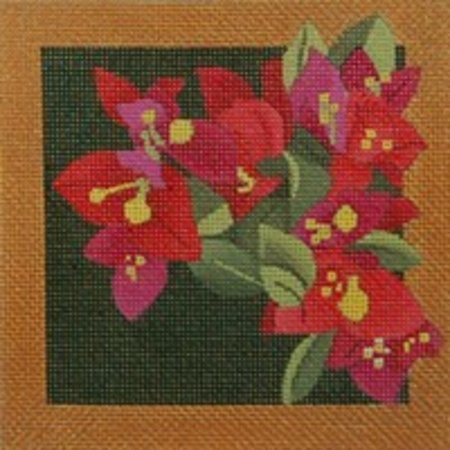 BOUGAINVILLA COASTER