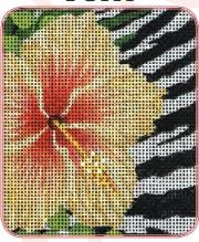 Wild Hibiscus