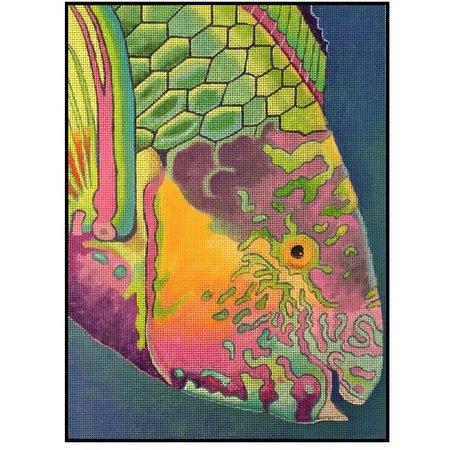 Surf Parriot Fish