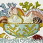 Shell Compote- green  Coral