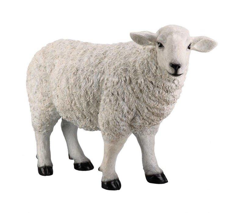 BAA BAA WHITE SHEEP STATUE