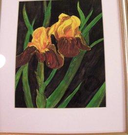 11 - Virginia Ackerman Iris
