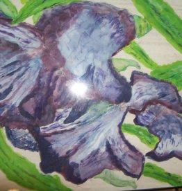 15 - Gary Fauble Purple Iris