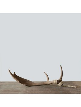 Caribou Antler Decor for Sitting or Hanging