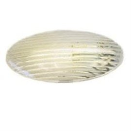 Gustafason Gustafson Clear Porch Light Lens