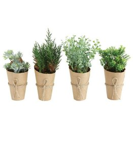 Plant - Small Artificial Assorted