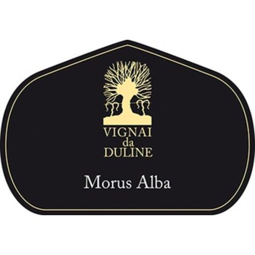Wine VIGNE DU DULINE MORUS ALBA BIANCO 2013