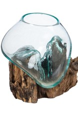 Glass Planter on Driftwood - Small