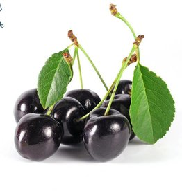 Black Cherry | 30ml | Salt