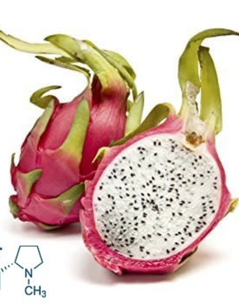 Dragon Fruit | 30ml | Salt
