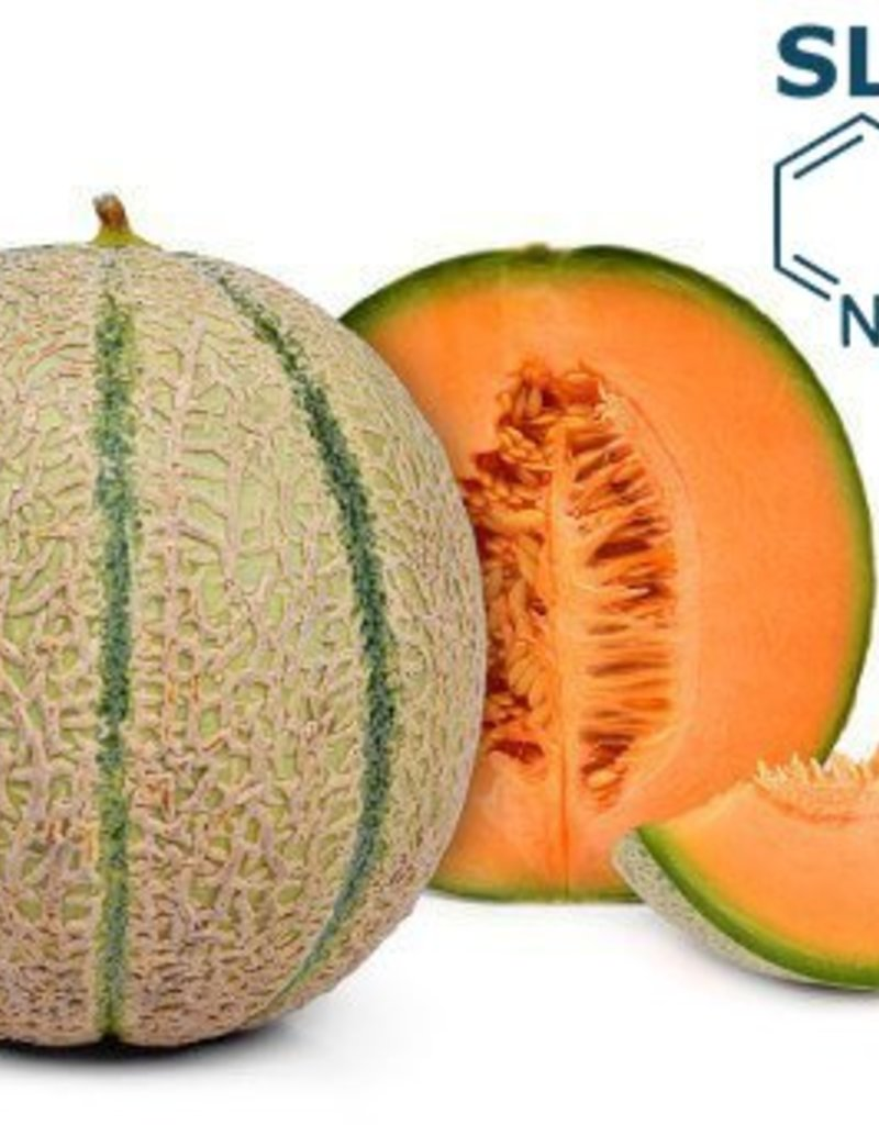 Cantaloupe | 30ml | Salt