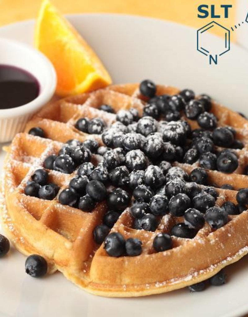 Blueberry Graham Waffle | 30ml | Salt